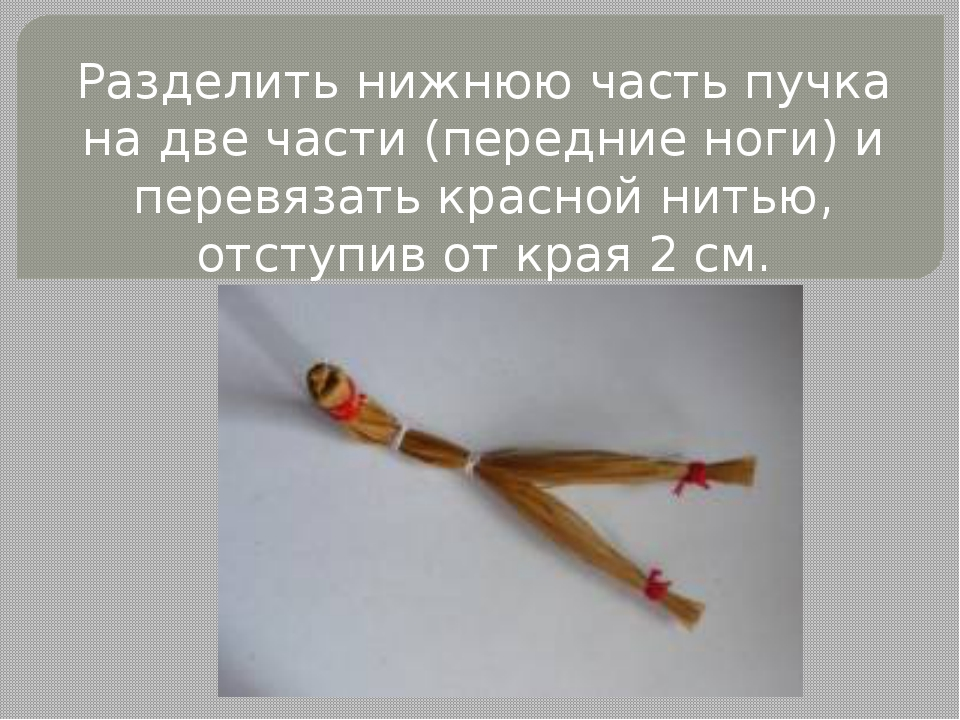 Разделить нижнюю часть пучка на две части (передние ноги) и перевязать красно...