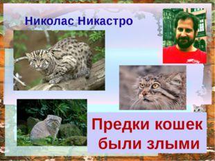 Предки кошек были злыми Николас Никастро http://ku4mina.ucoz.ru/