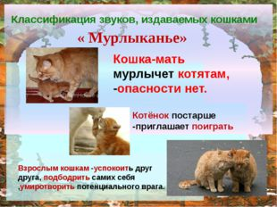Классификация звуков, издаваемых кошками « Мурлыканье» Кошка-мать мурлычет к