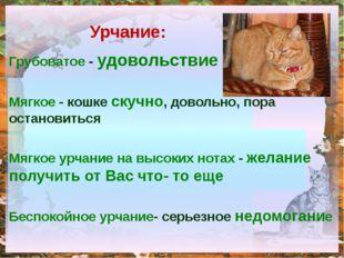 Грубоватое - удовольствие Мягкое - кошке скучно, довольно, пора остановиться