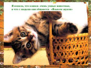 Я поняла, что кошки- очень умные животные, и что с людьми они общаются «Языко