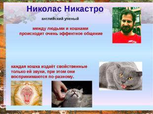 Николас Никастро английский ученый между людьми и кошками происходит очень э
