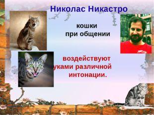- кошки при общении воздействуют звуками различной интонации. Николас Ника