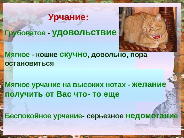 Грубоватое - удовольствие Мягкое - кошке скучно, довольно, пора остановиться...