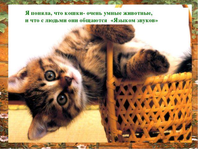 Я поняла, что кошки- очень умные животные, и что с людьми они общаются «Языко...