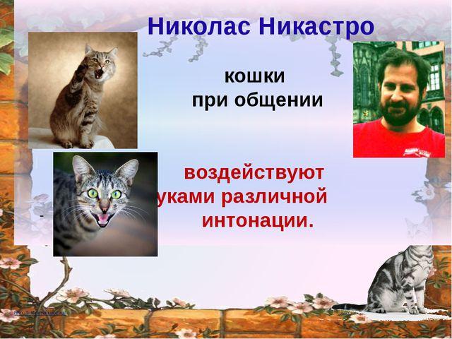 - кошки при общении воздействуют звуками различной интонации. Николас Ника...