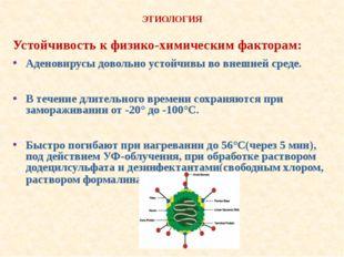 ЭТИОЛОГИЯ Устойчивость к физико-химическим факторам: Аденовирусы довольно ус