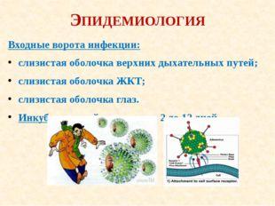 ЭПИДЕМИОЛОГИЯ Входные ворота инфекции: слизистая оболочка верхних дыхательных