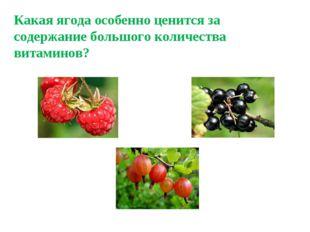 Какая ягода особенно ценится за содержание большого количества витаминов?