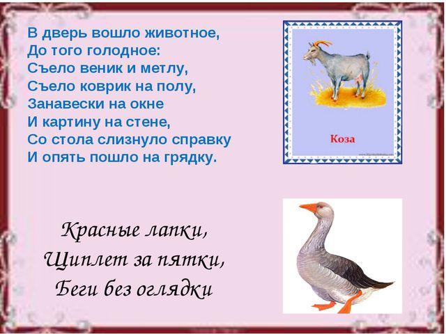 В дверь вошло животное, До того голодное: Съело веник и метлу, Съело коврик н...