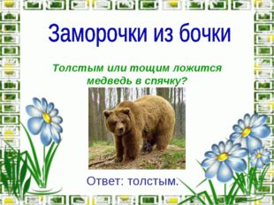 Толстым или тощим ложится медведь в спячку? Ответ: толстым.