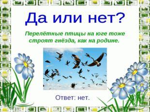 Перелётные птицы на юге тоже строят гнёзда, как на родине. Ответ: нет.