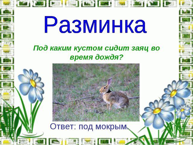 Под каким кустом сидит заяц во время дождя? Ответ: под мокрым.