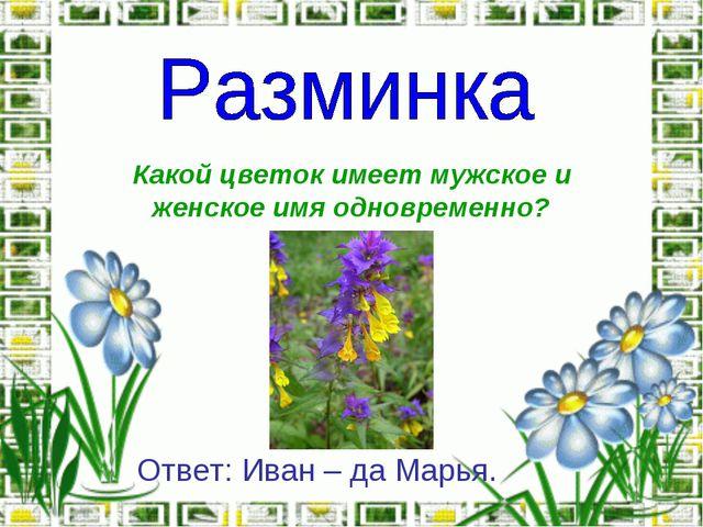 Какой цветок имеет мужское и женское имя одновременно? Ответ: Иван – да Марья.
