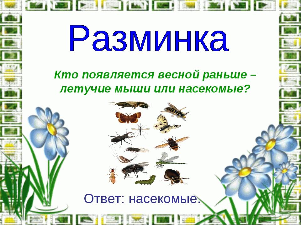 Кто появляется весной раньше – летучие мыши или насекомые? Ответ: насекомые.