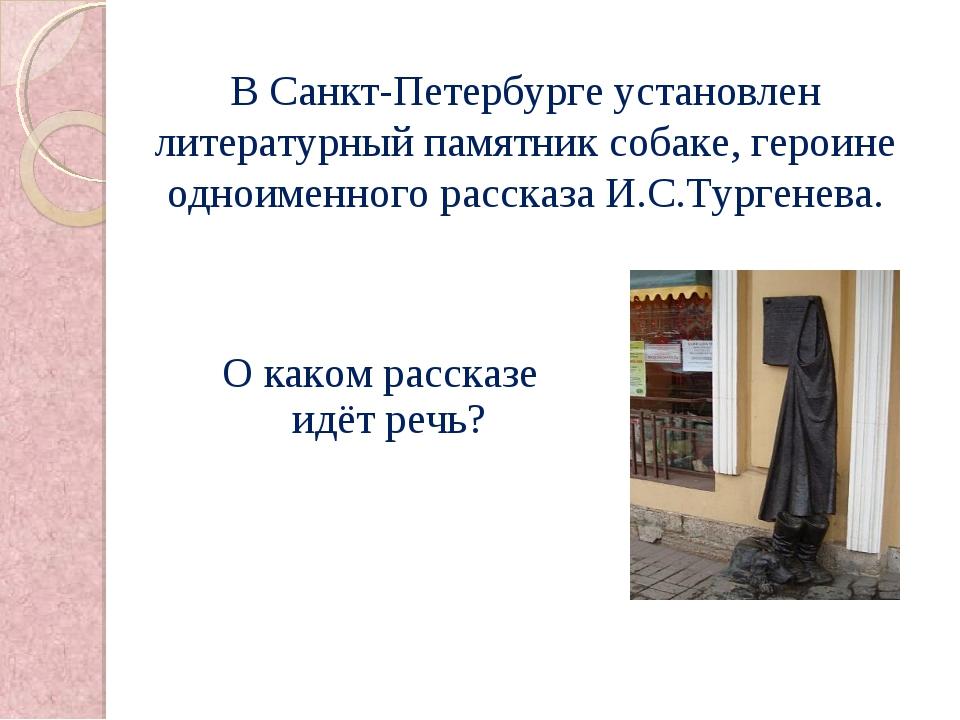 В Санкт-Петербурге установлен литературный памятник собаке, героине одноименн...