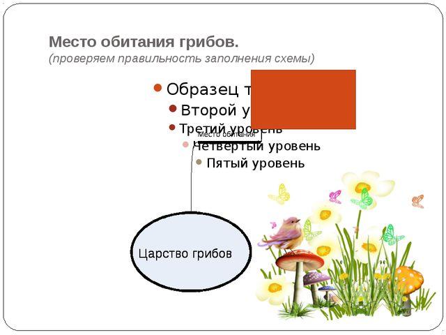 Место обитания грибов. (проверяем правильность заполнения схемы)