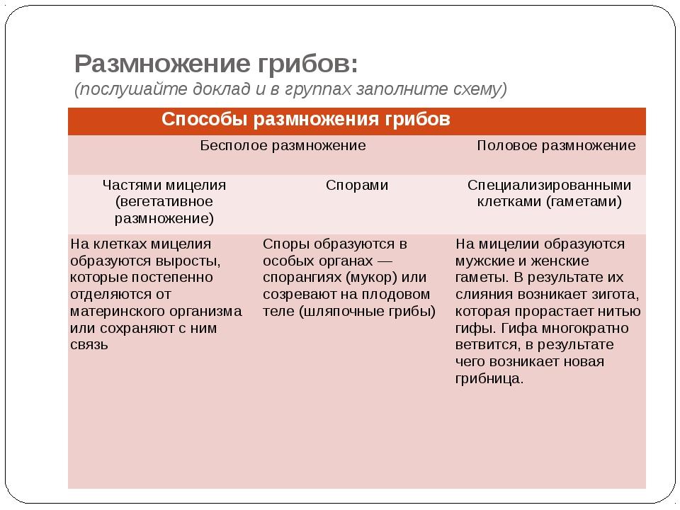 Размножение грибов: (послушайте доклад и в группах заполните схему) Способы р...