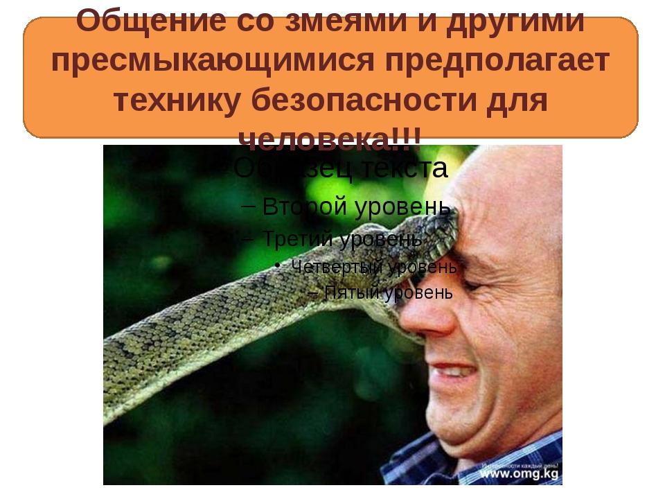 Общение со змеями и другими пресмыкающимися предполагает технику безопасност...