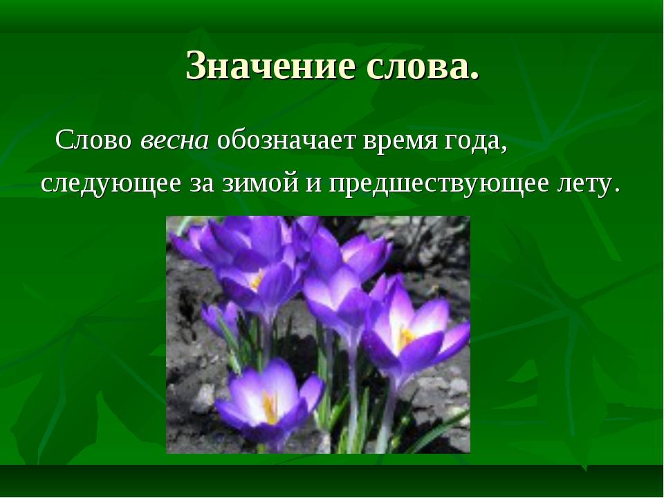 Значение слова. Слово весна обозначает время года, следующее за зимой и предш...