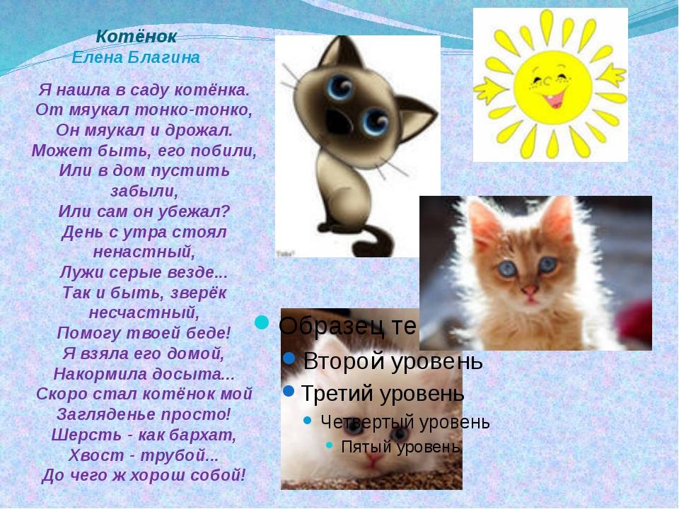 Котёнок Елена Благина Я нашла в саду котёнка. От мяукал тонко-тонко, Он мяука...
