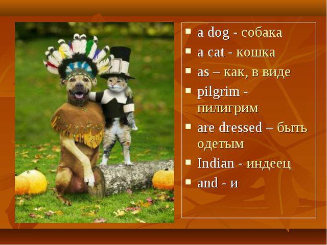 a dog - собака a cat - кошка as – как, в виде pilgrim - пилигрим are dressed...
