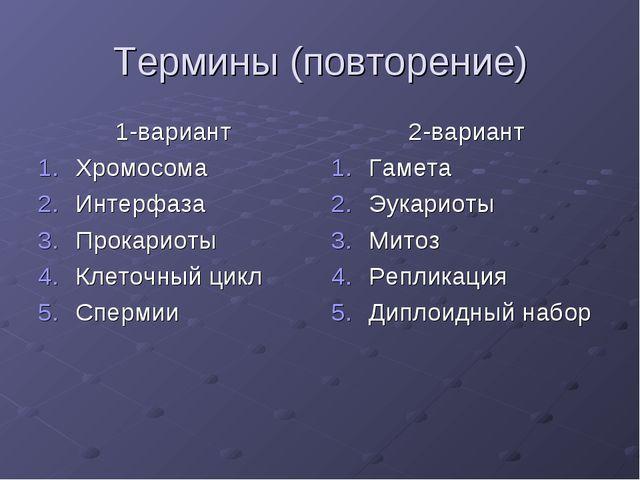 Термины (повторение) 1-вариант Хромосома Интерфаза Прокариоты Клеточный цикл...