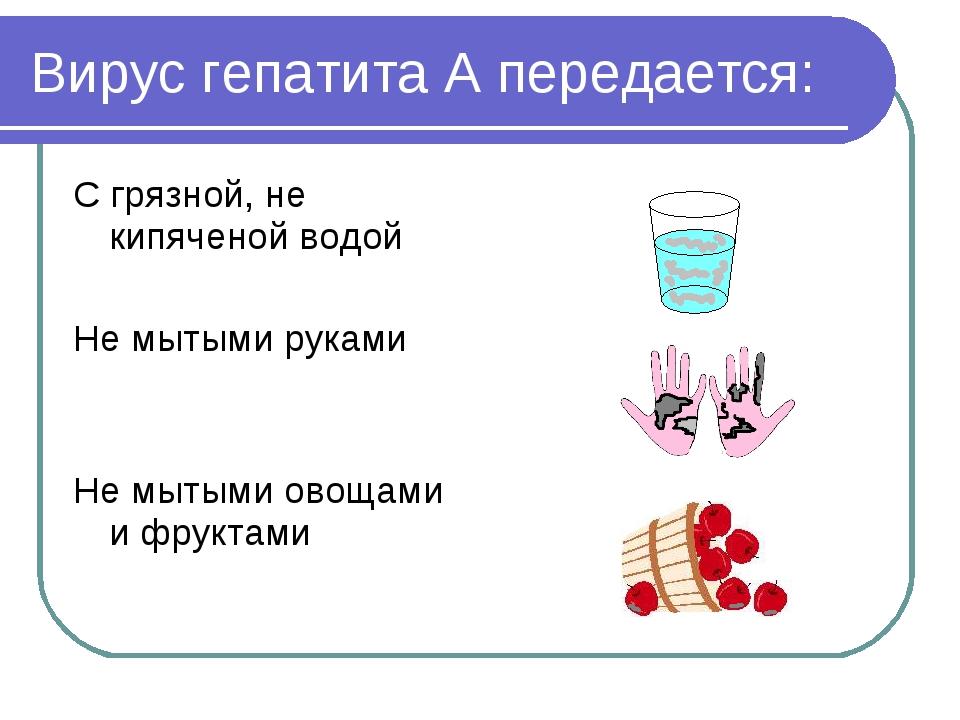 Вирус гепатита А передается: С грязной, не кипяченой водой Не мытыми руками Н...