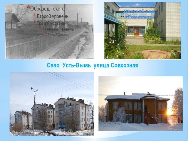 Село Усть-Вымь улица Совхозная