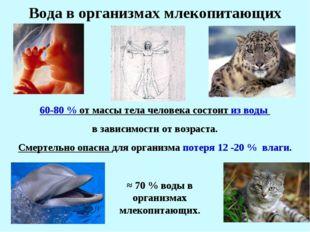 * ≈ 70 % воды в организмах млекопитающих. Вода в организмах млекопитающих 60-