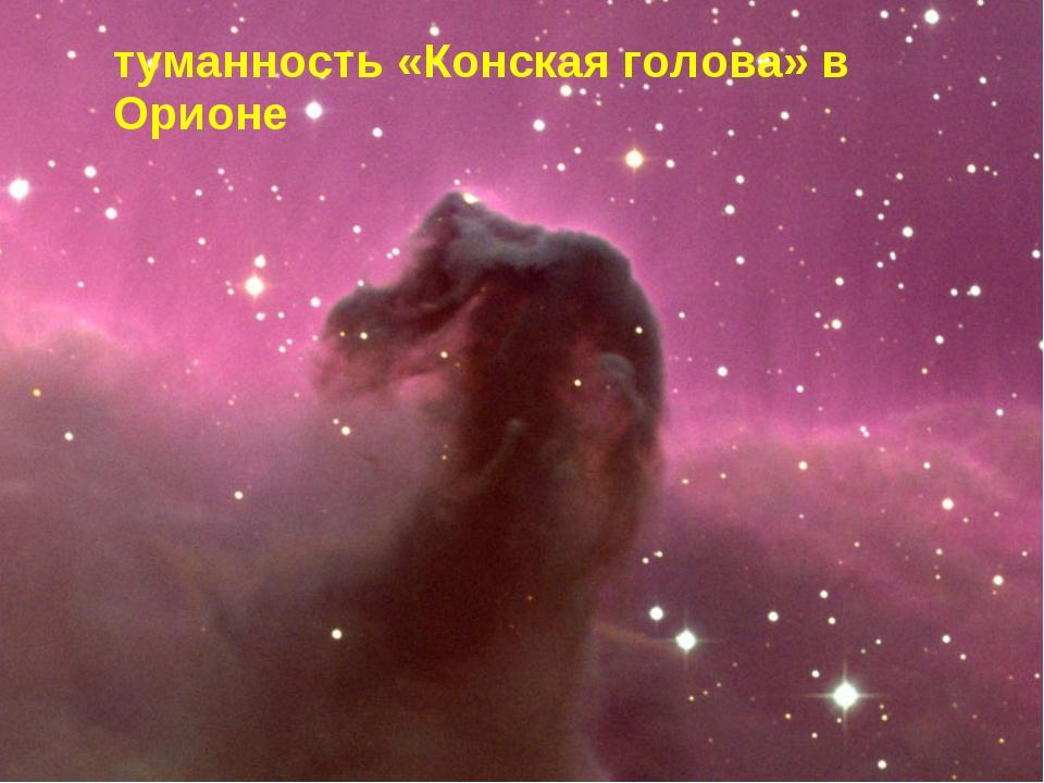 туманность «Конская голова» в Орионе