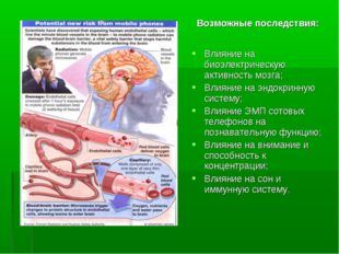 Влияние на биоэлектрическую активность мозга; Влияние на эндокринную систему;
