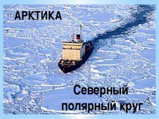 АРКТИКА Северный полярный круг
