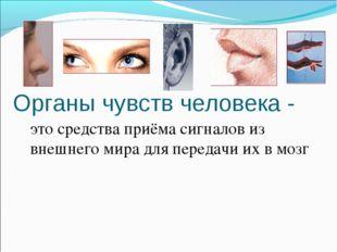 Органы чувств человека - это средства приёма сигналов из внешнего мира для п