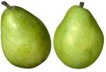 J:\фрукты\slide0007_image006.jpg