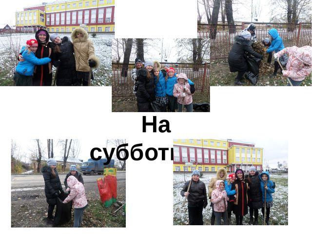 На субботнике Ноябрь 2014-2015 уч. г.