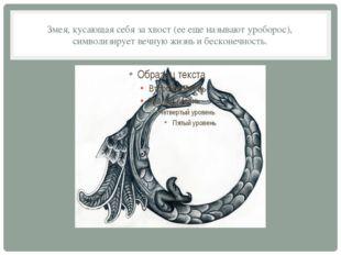 Змея, кусающая себя за хвост (ее еще называют уроборос), символизирует вечную