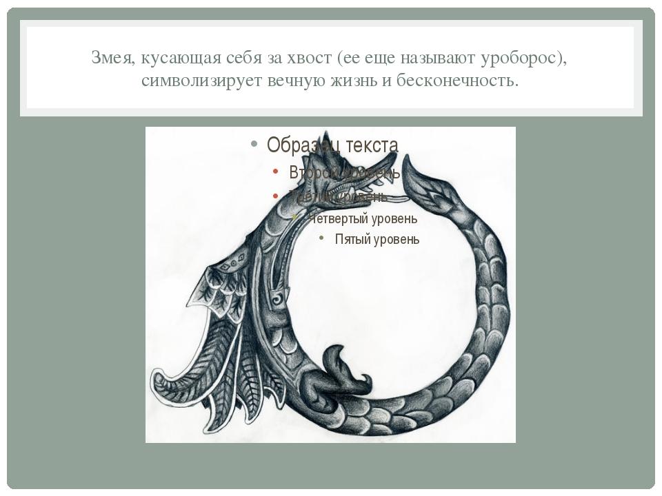 Змея, кусающая себя за хвост (ее еще называют уроборос), символизирует вечную...