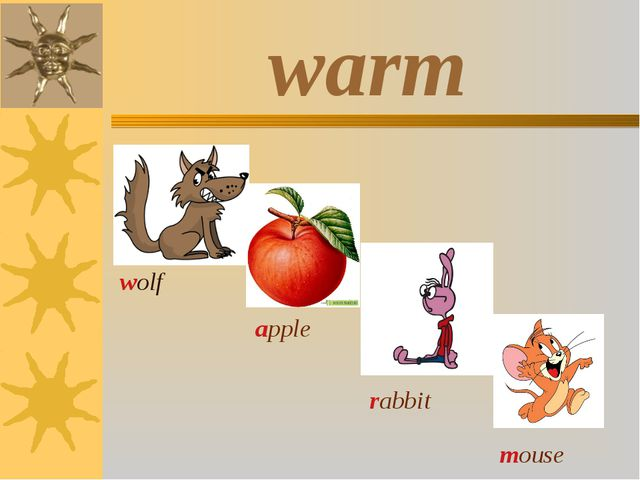warm wolf apple rabbit mouse