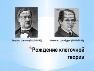 Рождение клеточной теории Теодор Шванн (1810-1882) Маттиас Шлейден (1804-1881