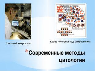 Современные методы цитологии Световой микроскоп Кровь человека под микроскопо