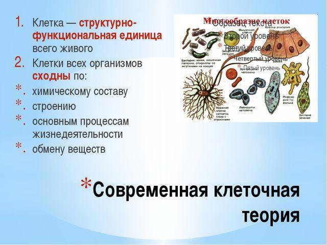 Современная клеточная теория Клетка — структурно-функциональная единица всего...