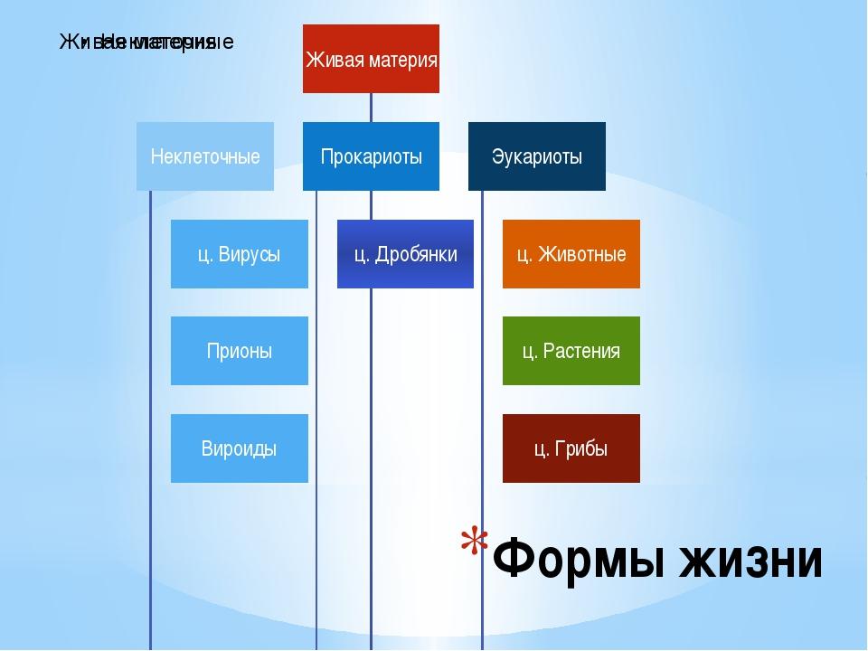 Формы жизни Схема форм жизни. Деление на царства.