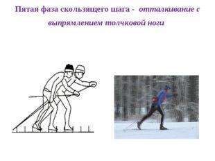 Пятая фаза скользящего шага - отталкивание с выпрямлением толчковой ноги