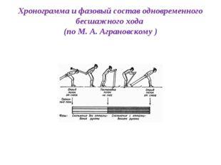 Хронограмма и фазовый состав одновременного бесшажного хода (по М. А. Агранов