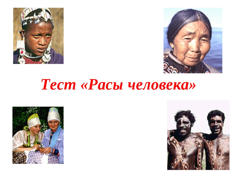 Тест «Расы человека»