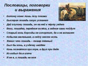 Пословицы, поговорки и выражения Битому коню лишь лозу покажи Быстрая лошадь