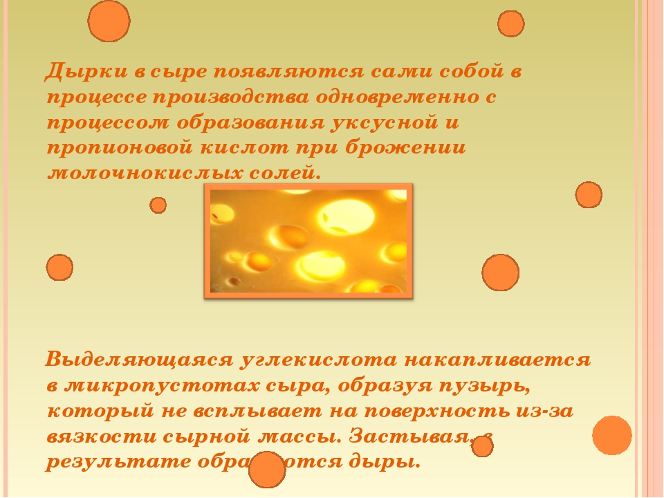 Дырки в сыре появляются сами собой в процессе производства одновременно с пр...