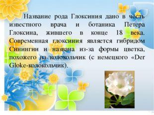 Название рода Глоксиния дано в честь известного врача и ботаника Петера Глок