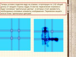 Теперь условно поделим кадр на отрезки, в пропорции по 1.62 общей длины о